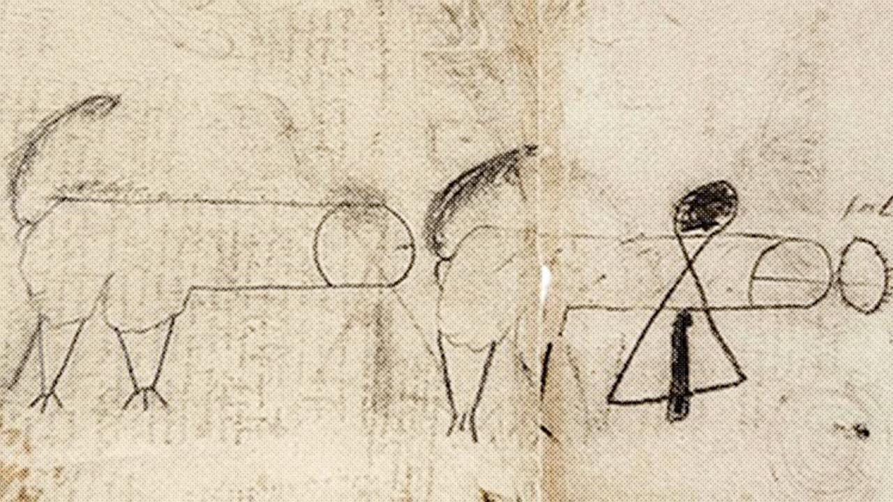 Comical Penis Drawingsfrom The Sketchbook Of Leonardo -9345