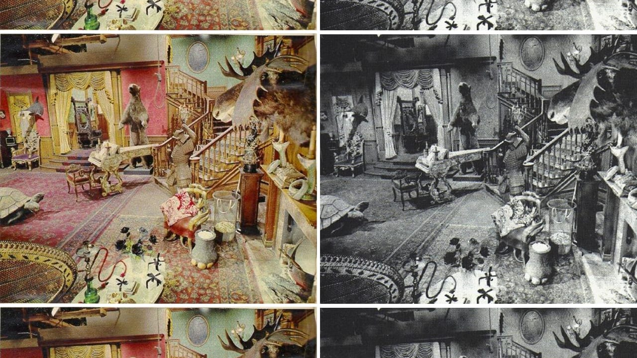 The Addams Family S Living Room Was Pink Co Design
