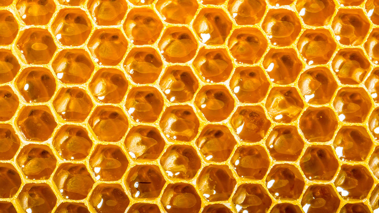 can a smart beehive network of opensource hives help s