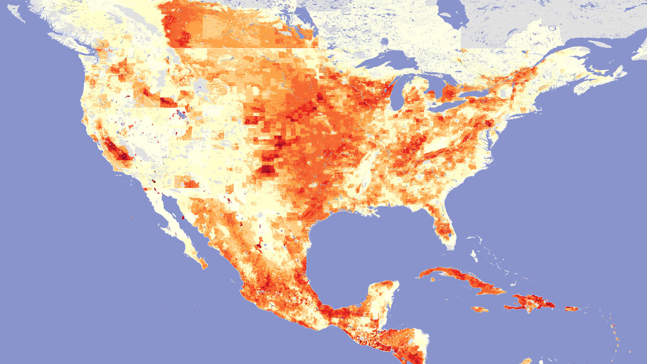 A Massive Global Map Of Where All The Cattle Pigs And Fast Company - Map of us livestock population