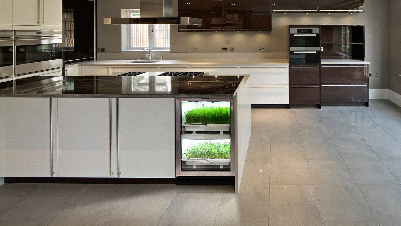 Turn Your Kitchen Into A Garden With This Mini-Fridge-Sized ...