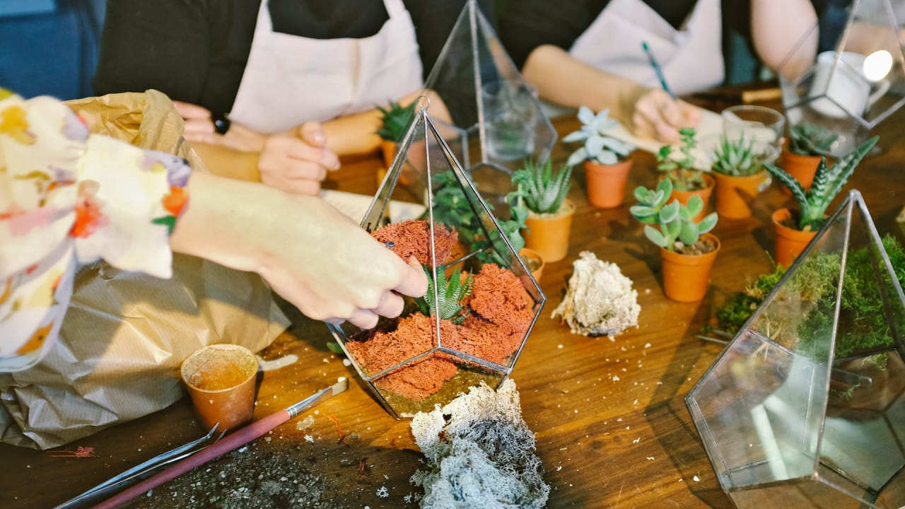 How To Plant An Urban Garden: A Step-By-Step Tutorial ...
