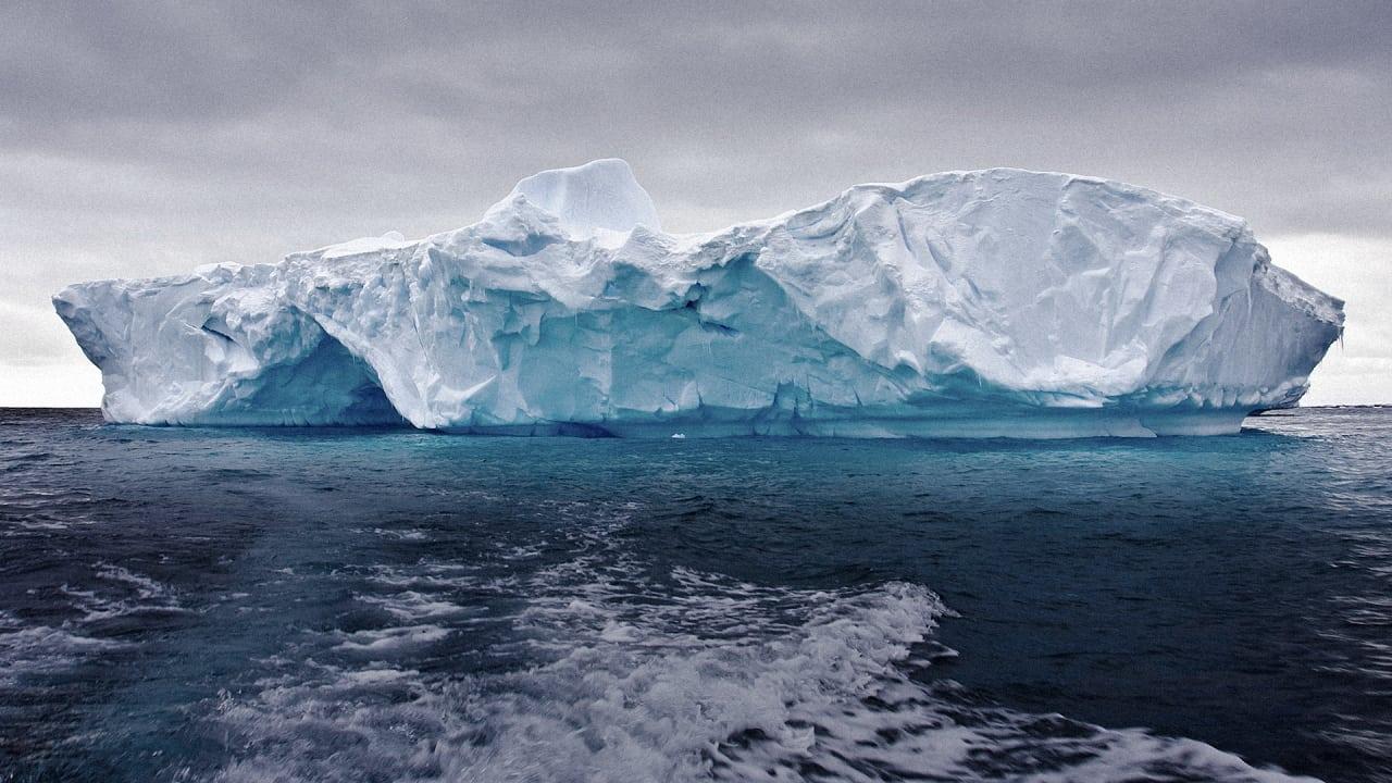 Iceberg Fast Food