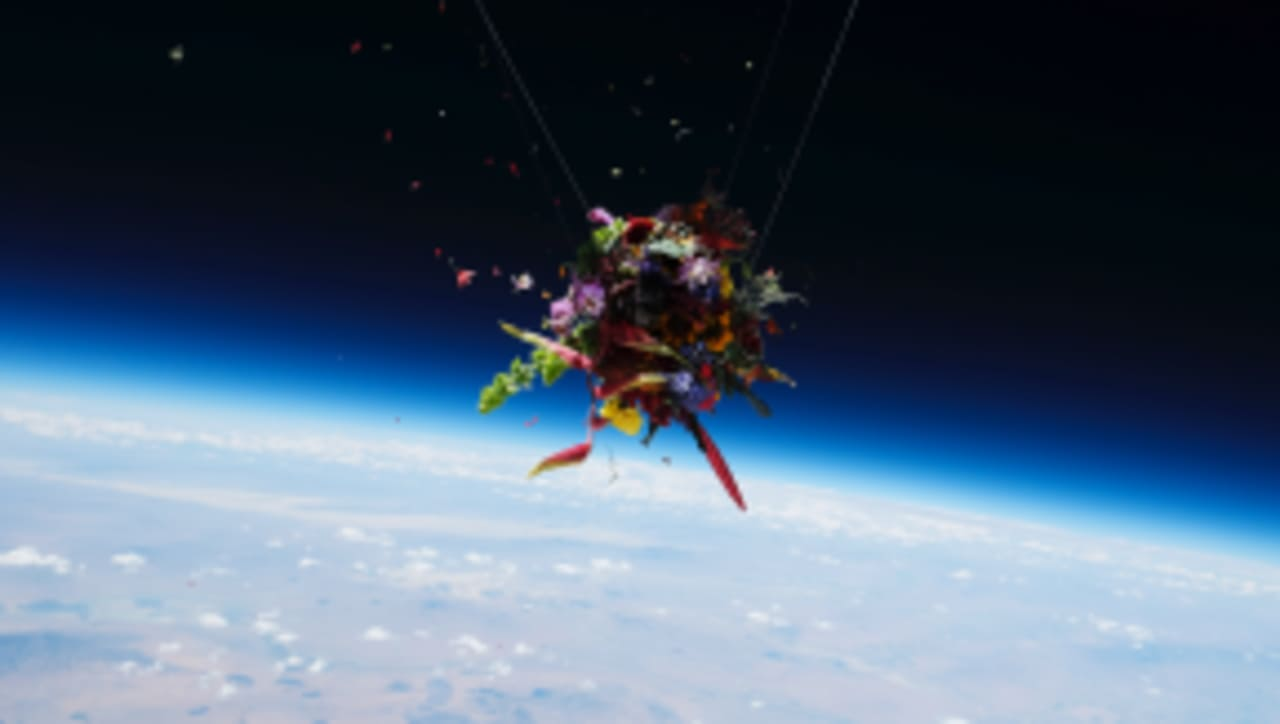 What Happens When You Launch Flower Bouquets Into Space
