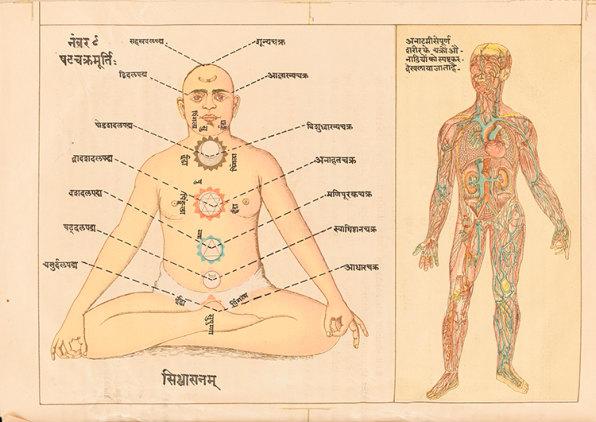 A Visual History Of Yoga