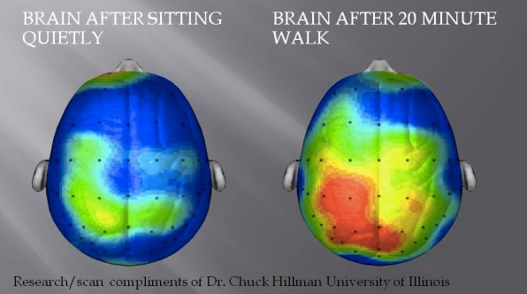 What Happens To Our Brains When We Exercise And How It