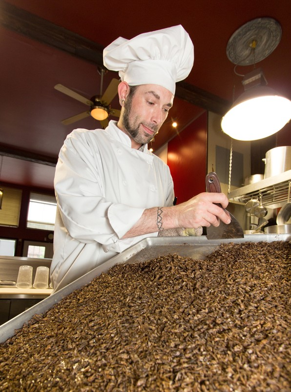 Millenium Auto Sales >> Inside The Edible Insect Industrial Complex | Fast Company
