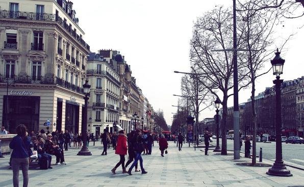 Citizen-Centered Cities, Volume II: City Studies of Public Involvement