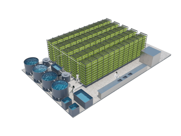 Juni 2018 easy build aquaponics a massive aquaponic lettuce and fish farm will grow in flashek Gallery