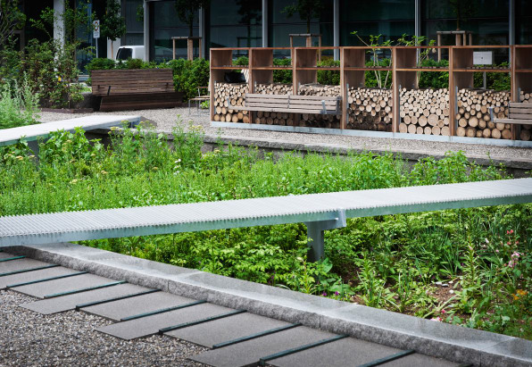 A landscape architect redesigns the medieval medicinal garden for Architecture companies in florida