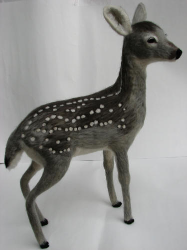 <p>A white-tailed deer fawn.</p>