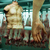 Human Butcher Shop