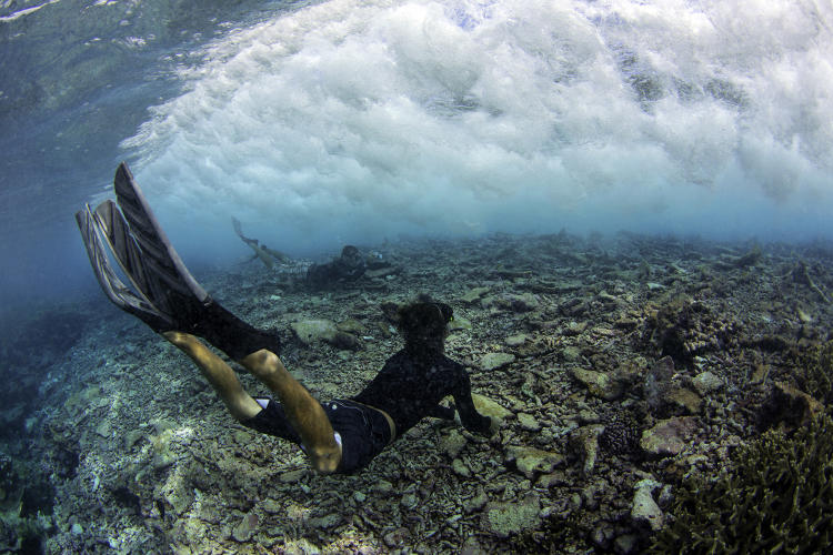 <p>Conservancy Marine Chief  Kydd Pollack and Brandon Bourke dive under a breaking wave at the reef crest near Pengiun Spit withing Palmyra Atoll in the equatorial Northern Pacific. The Nature Conservancy and the U.S. Fish &amp; Wildlife Service are partnering to protect the Atoll while the Palmyra Atoll Research Consortium is developing it as a center for scientific study.</p>